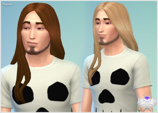 David Sims: Hairstyle for male for Sims 4