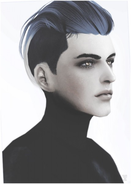 Black le: Newsea`s Next hairstyle converted for Sims 4