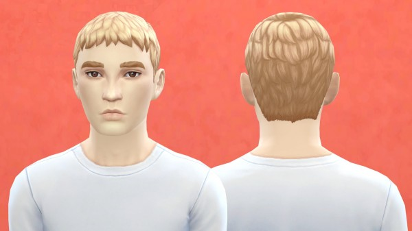 Pickypikachu: 2 Male hairstyle retextured for Sims 4