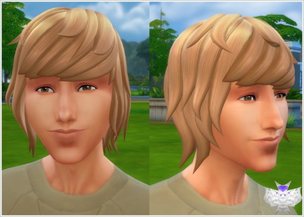 David Sims: Spikey Hairstyle for Sims 4