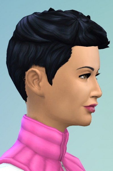 Birksches sims blog: Short Prickley Hair for Sims 4