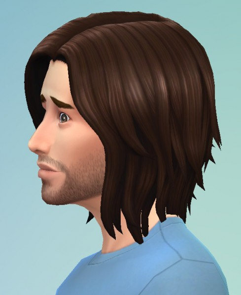 Birksches sims blog: Texture hair for him for Sims 4