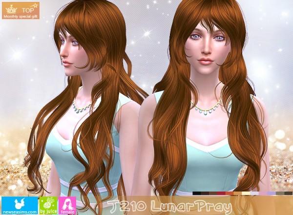 NewSea: J210 Lunar Pray for Sims 4