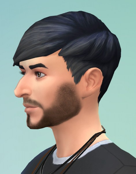 Birksches sims blog: Leo hair for him for Sims 4