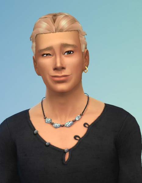 Birksches sims blog: Adams Ponytail & Little Adams Ponytail hairs for Sims 4