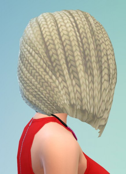Birksches sims blog: Braids at Chin hair for Sims 4