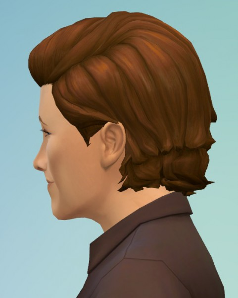 Birksches sims blog: After Hour Hair for Sims 4