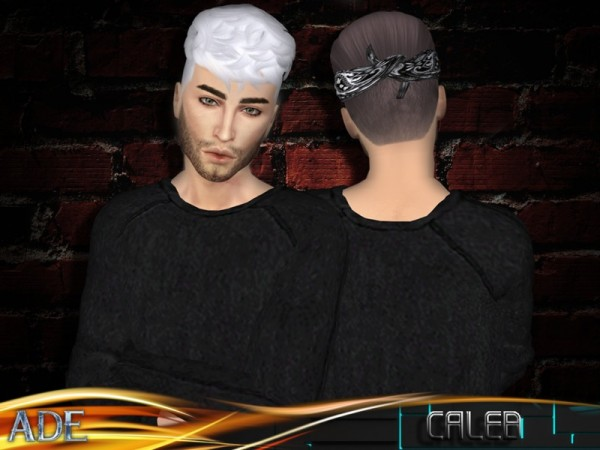 The Sims Resource: Caleb hair by Ade Darma for Sims 4