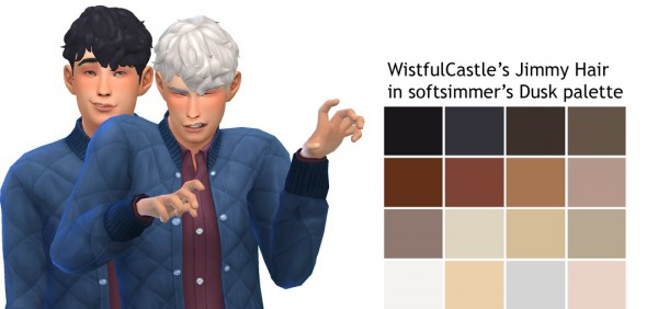 Willow Geek: Wistful Castle's Jimmy Hair for Sims 4