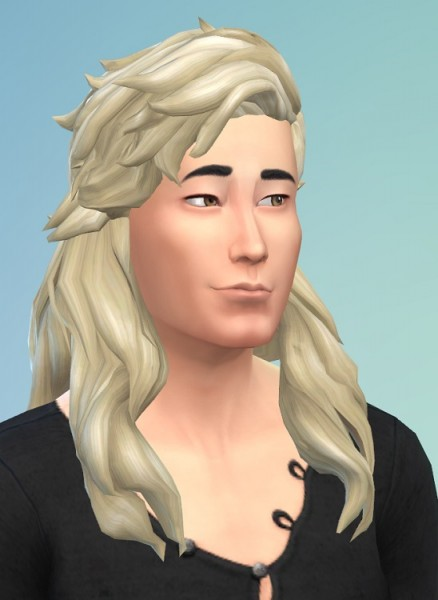 Birksches sims blog: Frisbee Hair for Sims 4