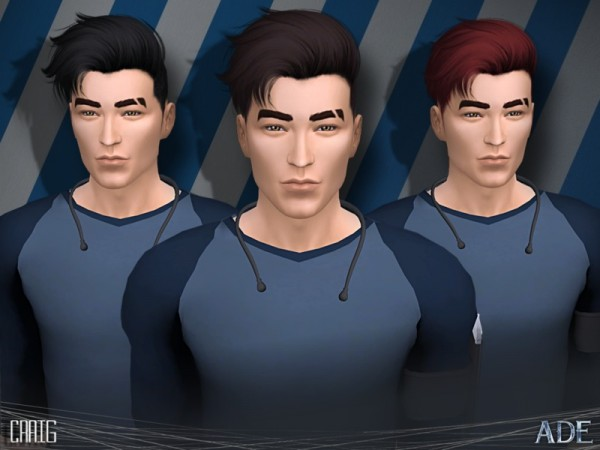 The Sims Resource: Craig hair by Ade Darma for Sims 4