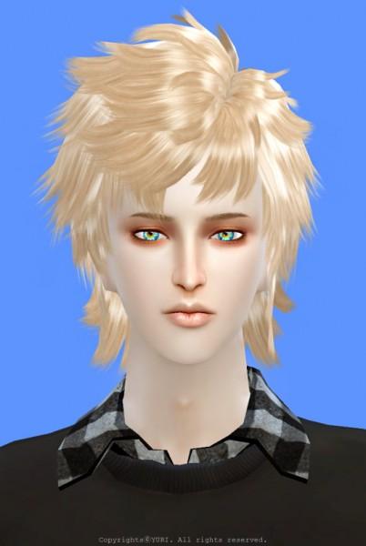 Twinklestar: Dynasty Warriors 8 XuShu Hair retextured for Sims 4