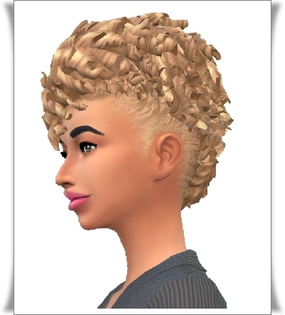 Birksches sims blog: Marci caurs hair for Sims 4