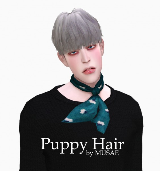 Effie: Puppy hair for Sims 4