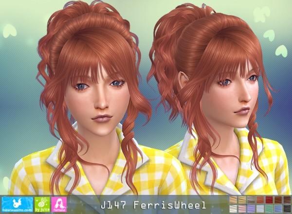 NewSea: J147 Feris Weel for Sims 4