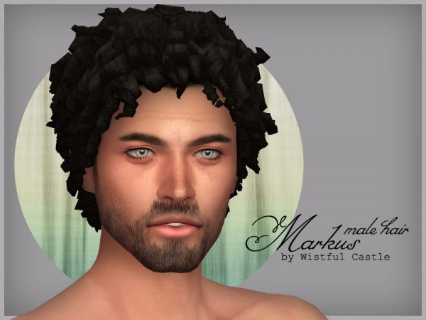 The Sims Resource: Markus hair by WistfulCastle for Sims 4