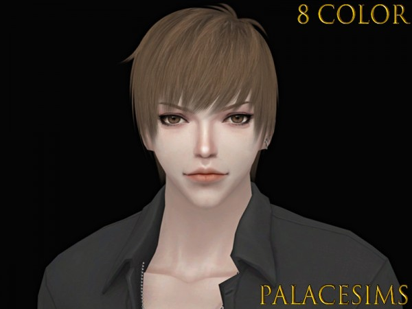 The Sims Resource: M1217 Hair by Palace Sims for Sims 4