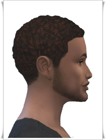 Birksches sims blog: Holyday Short Afro Hair retextured for Sims 4