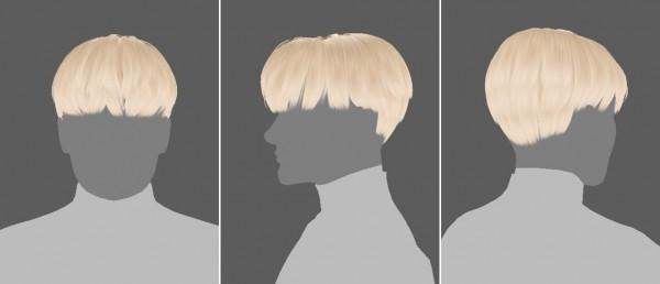Effie: Dust hair for Sims 4