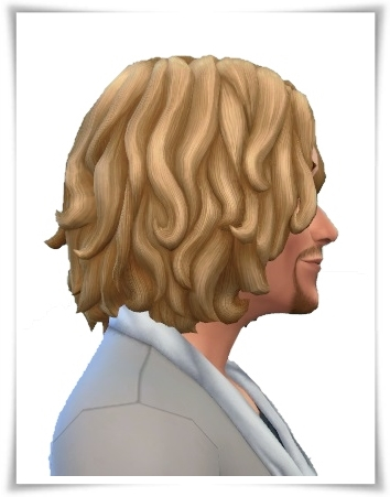 Birksches sims blog: Chin Waves hair for Him for Sims 4
