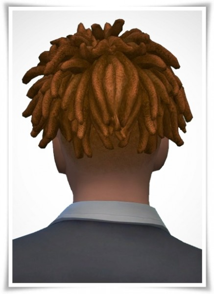 Birksches sims blog: Chad Dreads for Sims 4