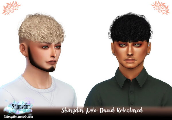 Shimydim: Anto`s David Hair Retextured for Sims 4