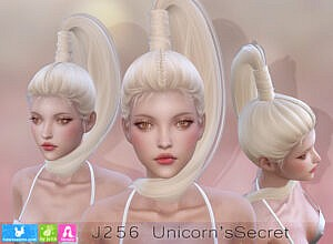Unicorn`s Secret Hairstyle