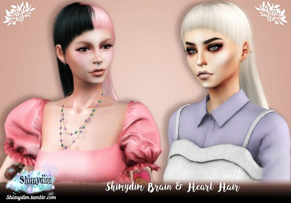 Brain and Heart Hairstyle ~ Shimydim for Sims 4