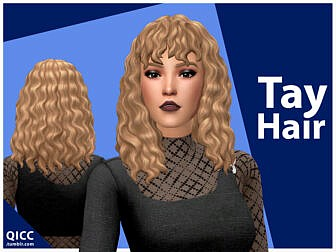 Tay Hairstyle by qicc